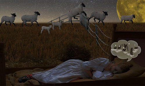 Einschlafen - Schäfchen zählen