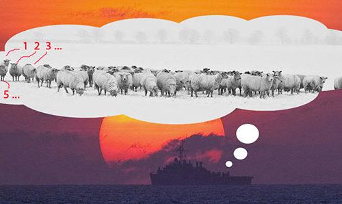 Marines die auf Schafe starren